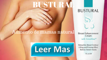 bustural-banner