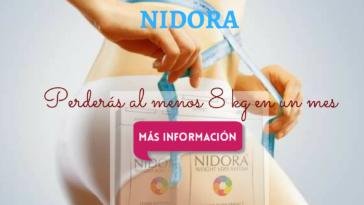 nidora-banner