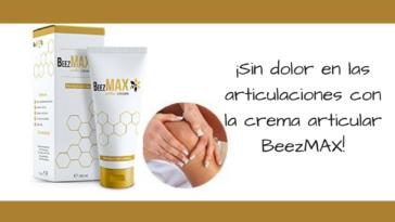 BeezMAX Más Información
