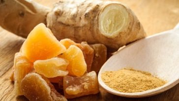 Three kinds of ginger - ground spice fresh and candied on rustic table. Healthy eating, home remedy for nausea upset stomach colds.