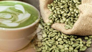 cafe verde para adelgazar